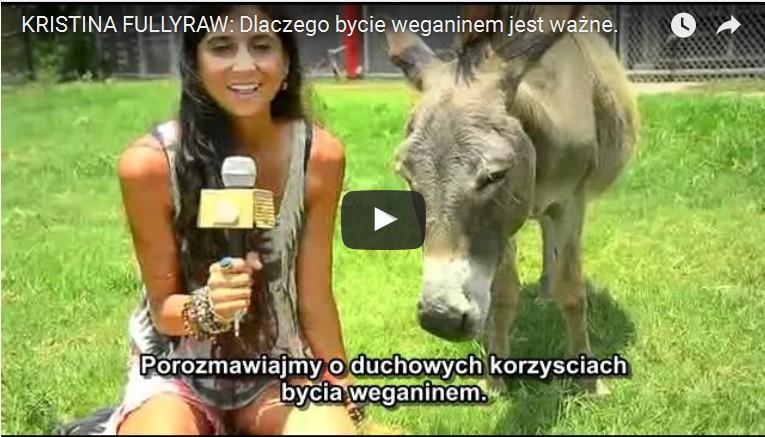 Dlaczego bycie Weganinem jest takie ważne – Nowy filmek z Polskimi napisami
